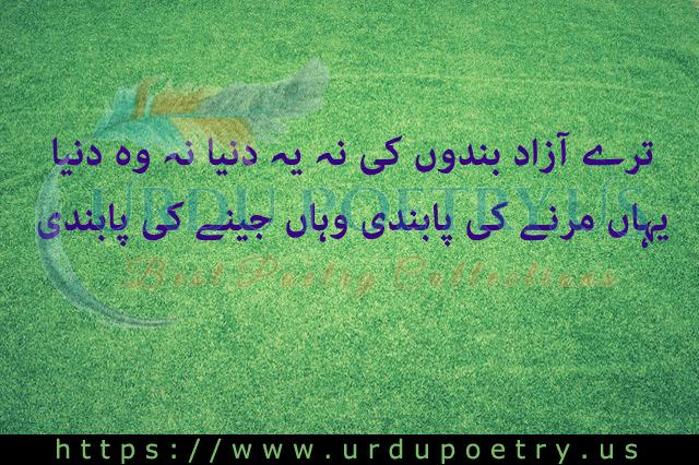 Allama Iqbal 4