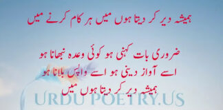 Munir Niazi 4