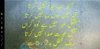Munir Niazi 5