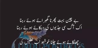 Munir Niazi 6