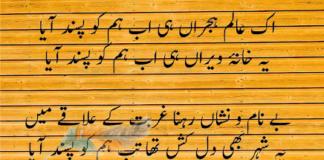Munir Niazi 7