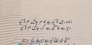 Munir Niazi 8