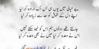 Munir Niazi 9
