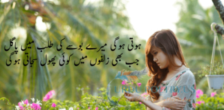 wasi shah1