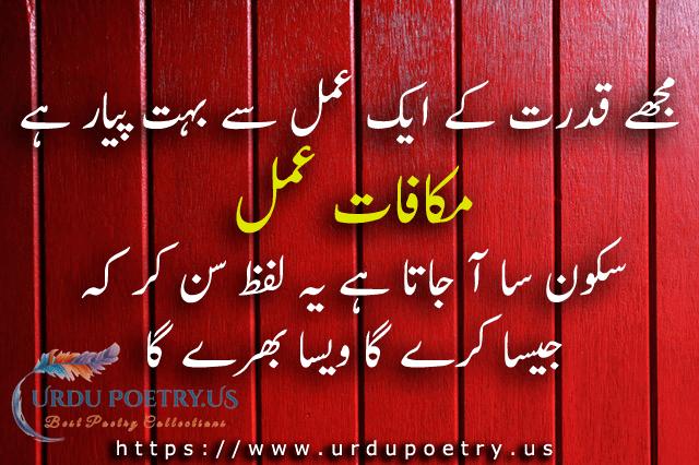 islam-quotes-10