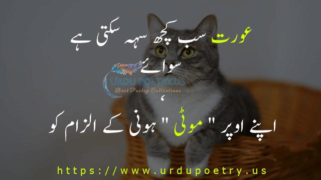 funny-quotes-urdu-27