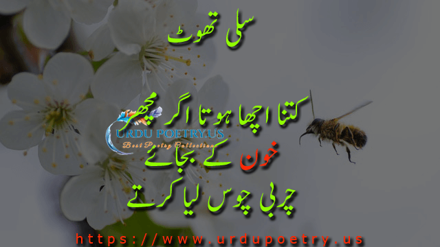 funny-quotes-urdu-29