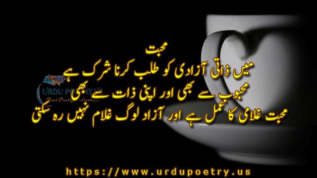 love-quotes-urdu3