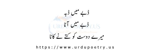 funny-jokes-about-friends-in-urdu-12