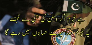 Shayari on Independence Day of Pakistan in Urdu 07